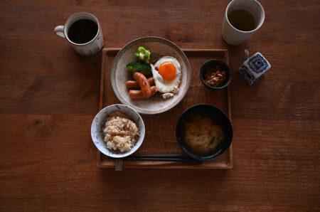 朝ごはんと日本野鳥の会の靴下